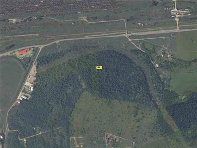 Superpret: 9 euro Teren 100.000 mp, Iasi, zona Bucium